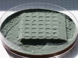 Mikrobiologische Laboruntersuchung DCF 1.0 (2)