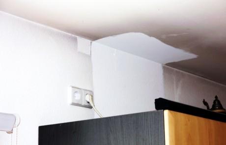"""Schwarzer Staub im Haus durch """"Fogging"""" ist kein Schimmelpilz - Bild 1"""