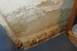 Korrosion an einer Kellerwand nach Wasserschaden
