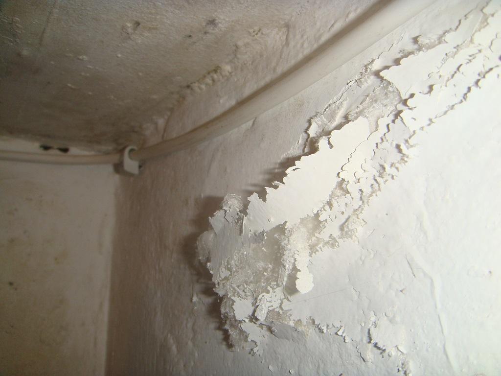 Beseitigung Von Baufeuchteschaden Und Trockenlegung Feuchter Keller