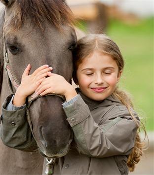 Pferd mit Kind